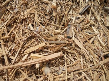 wood waste for making biomass pellet