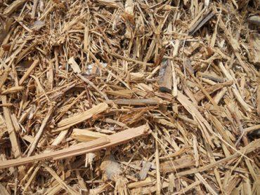 wood waste for making biomass pellet