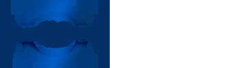 Whirlston-logo