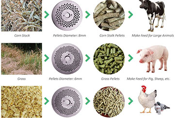 make-animal-poultry-feed-pellets